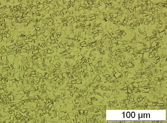 Legierung 1.4404 oder 316L - ASTM F899